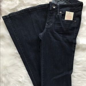 NWT Level 99 Anthropologie Flare leg jeans Size 25